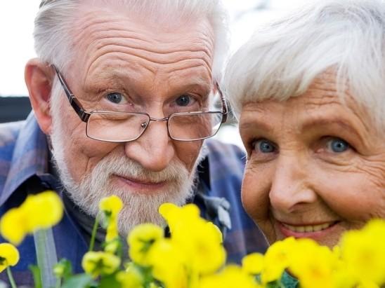 Apie pensijų atsiradimą ir pensijų fondus